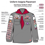 Cub Uniform Insignia Placement